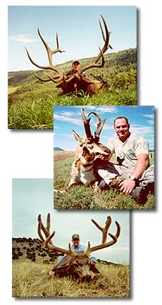 Kennedy Hunting Service...providing quality private land hunts for Deer, Elk, Antelope, Bear, and Turkey.
